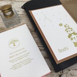 letterpress-geboortekaartje-bodhi-pandabeer-goud-abrikoos-kleuropsnede-sterretjes-handgemaakt-drukpers-boompje-pistacheboom