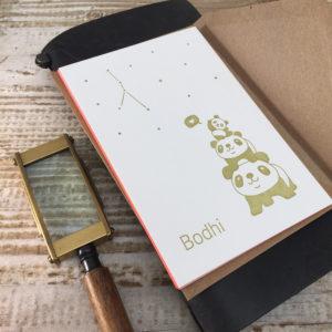letterpress-geboortekaartje-bodhi-pandabeer-goud-abrikoos-kleuropsnede-sterretjes-handgemaakt-drukpers-boompje-pistacheboom-voorkant