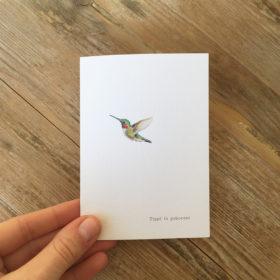 kolibri-geboortekaartje-aquarel-diertjes-geschilderd-emboss-glitter-glittertje-hummingbird-drawing-tippi-tekening