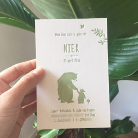 letterpress-geboortekaartje-niek-beren-welterusten-grote-beer-beertjes-kinderboek-illustratie-getekend