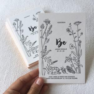 letterpress-geboortekaartje-veldbloemen-bo-hertje-wildebloemen-botanisch-handgetekend-bloemen-fluitekruid-papaver-zomer