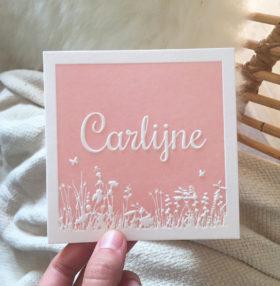 letterpress-geboortekaartje-carlijne-preeg-zachtroze-babyroze-heide-bloemen-thema-veldbloemen-lente-vrolijk-relief-diepdruk-amsterdam