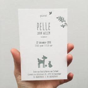 letterpress-geboortekaartje-pelle-hertje-konijntje-vogeltje-takje-jongenskaartje-letterpressamsterdam-relief-diepdruk-bijzonder-uniek-handgemaakt