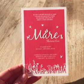 geboortekaartje-letterpress-mare-bosdiertjs-roze-donkerroze-hertje-vogeltje-heide-vosje-vlindertje-sierlijk-gras-natuur-relief-karton-mare