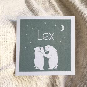 geboortekaartje-beer-beren-welterusten-illustratie-kinderboek-grotebeer-kleinebeer-sterren-lief-tekening