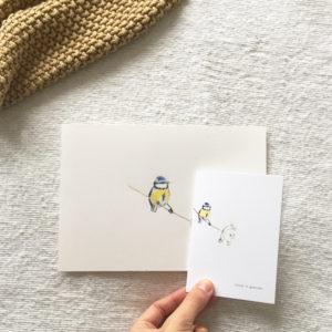 geboortekaartje-vogeltje-pimpelmeesje-vinkje-aquarel-geschilderd-tekening-illustratie-juliet-anna-nina-koolmeesje-fluitenkruid
