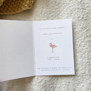 Geboortekaartje-aquarel-zusjes-zee-strand-tekening-illustratie-flamingo